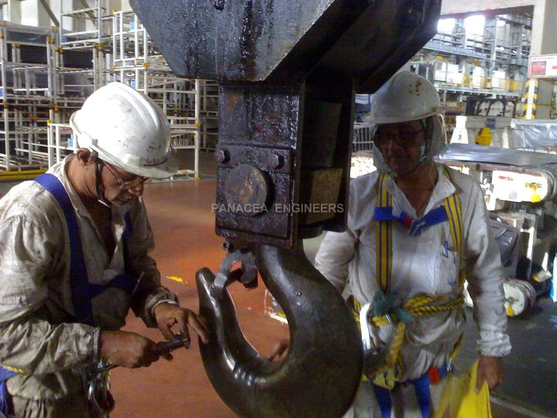 Crane Health Check up / Safety Audit